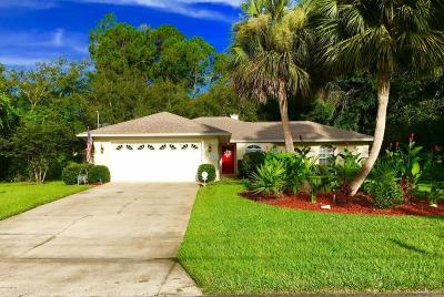 St. Johns County Single Family Home For Sale: 6801 E Seacove Ave