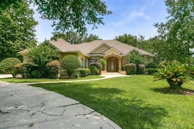 Green Cove Springs Single Family Home For Sale: 3685 La Costa Ct