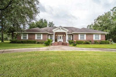 Clay County Single Family Home For Sale: 2939 Black Creek Dr