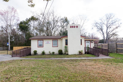 Middleburg Single Family Home For Sale: 393 College Dr #D