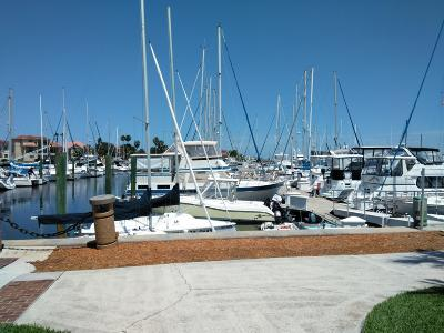St. Johns County, Clay County, Putnam County, Duval County Rental For Rent: 3101 Harbor Dr #101