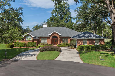 Green Cove Springs Single Family Home For Sale: 3670 Cypress Point Ct