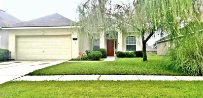 Jacksonville Single Family Home For Sale: 1455 Carpathian Dr
