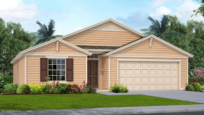 Green Cove Springs Single Family Home For Sale: 3260 Cypress Walk Pl