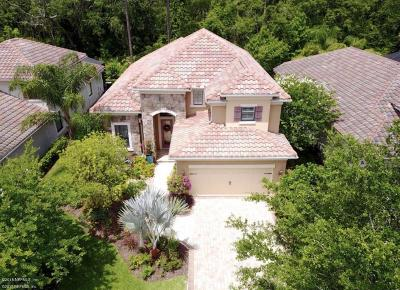 Ponte Vedra Single Family Home For Sale: 101 Marsh Hollow Rd