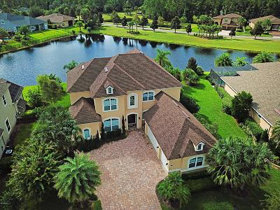 Austin Park, Coastal Oaks, Coastal Oaks At Nocatee, Del Webb Ponte Vedra, Greenleaf Preserve, Greenleaf Village, Kelly Pointe, Nocatee Single Family Home For Sale: 765 Port Charlotte Dr