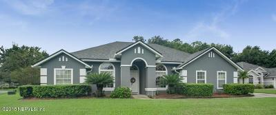 Orange Park Single Family Home For Sale: 1705 Bridled Tern Ct