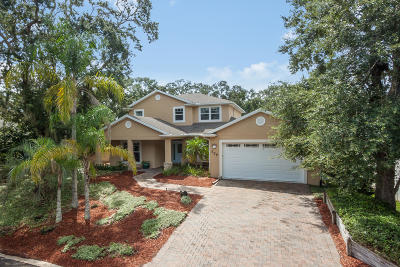 St Augustine Single Family Home For Sale: 309 Spanish Oak Ct
