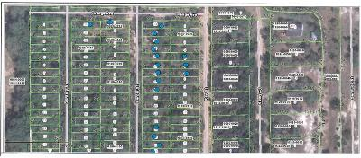 Interlachen FL Residential Lots & Land For Sale: $6,000
