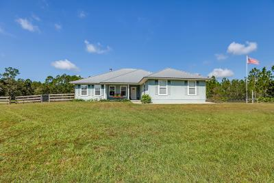 Green Cove Springs Single Family Home For Sale: 6390 Sandhill Rd