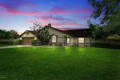 St Augustine Single Family Home For Sale: 4050 Barbara Ter