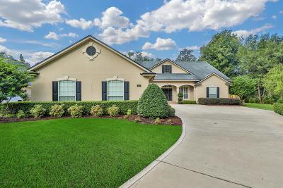 Jacksonville Single Family Home For Sale: 853 Peppervine Ave