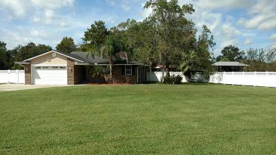 Green Cove Springs Single Family Home For Sale: 2766 Hidden Waters Dr