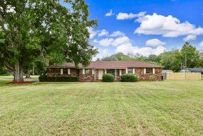 Jacksonville Single Family Home For Sale: 768 Ellis Rd S