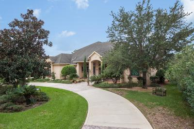 32080 Single Family Home For Sale: 176 Herons Nest Ln