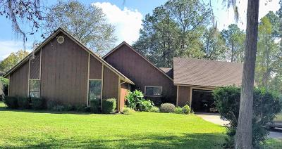 Middleburg Single Family Home For Sale: 1131 Cactus Cut Rd