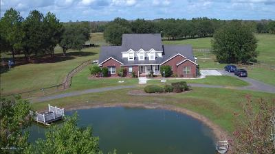 Macclenny Single Family Home For Sale: 9161 Mudlake Rd