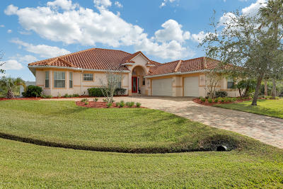 St. Johns County Single Family Home For Sale: 141 Pelican Reef Dr