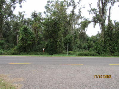 Residential Lots & Land For Sale: 491 Us-17