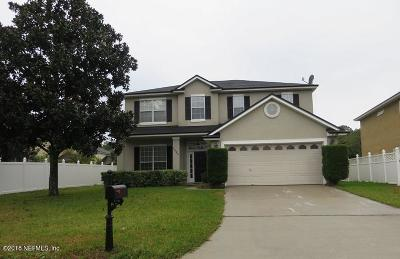 Jacksonville Single Family Home For Sale: 1204 Candlebark Dr
