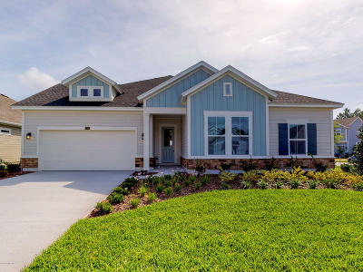Nocatee Single Family Home For Sale: 283 Village Grande Dr