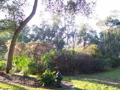 Residential Lots & Land For Sale: 217 Golden Oaks Ln