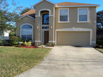 Clay County Single Family Home For Sale: 2739 Wood Stork Trl