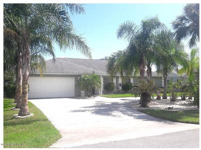 Flagler County Single Family Home For Sale: 25 Clinton Ct S