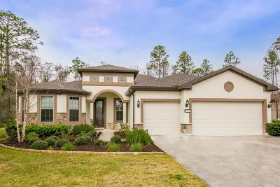 Ponte Vedra Single Family Home For Sale: 447 Eagle Pass Dr