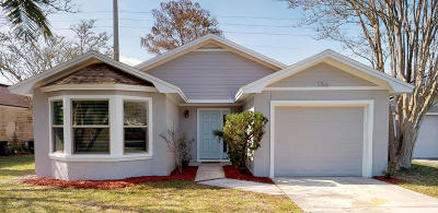 Ponte Vedra Beach Single Family Home For Sale: 156 Vista Grande Ct