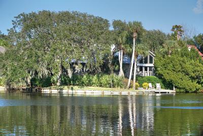 Fernandina Beach Single Family Home For Sale: 6 Oak Point Cir
