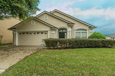 Orange Park Single Family Home For Sale: 3806 Hidden View Dr