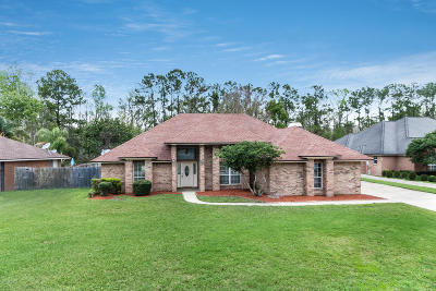 Mandarin Single Family Home For Sale: 2249 Hammock Oaks Dr N