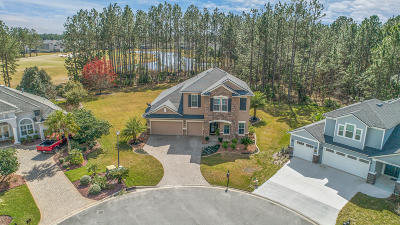 Clay County Single Family Home For Sale: 4411 Castle Palm Ct