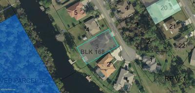 Flagler County Single Family Home For Sale: 20 Birchwood Pl
