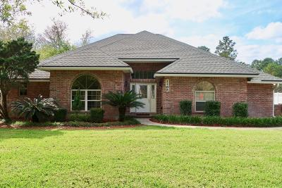 Marietta Single Family Home For Sale: 1102 Pebble Ridge Dr