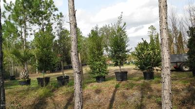 Residential Lots & Land For Sale: 2173 Indigo Ave
