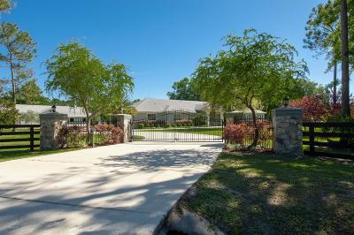 Jacksonville Single Family Home For Sale: 7051 Solomon Rd