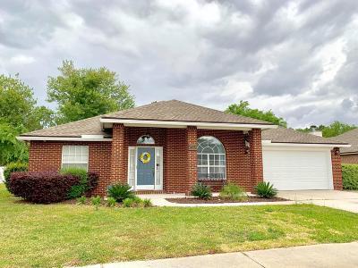 Fernandina Beach Single Family Home For Sale: 24036 Creek Parke Cir