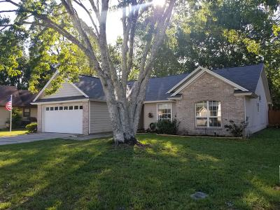 Jacksonville Single Family Home For Sale: 9138 Smoketree Dr