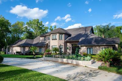 Jacksonville Single Family Home For Sale: 7901 James Island Trl