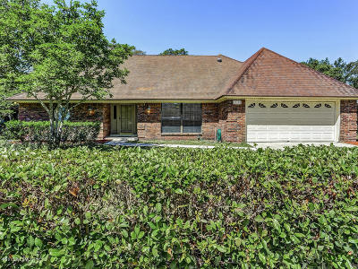Julington Creek Single Family Home For Sale: 12102 Dividing Oaks Trl E
