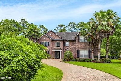 Austin Park, Coastal Oaks, Coastal Oaks At Nocatee, Del Webb Ponte Vedra, Greenleaf Preserve, Greenleaf Village, Kelly Pointe, Nocatee Single Family Home For Sale: 55 Hornbill Way