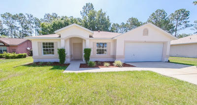 Flagler County Single Family Home For Sale: 84 Ramblewood Dr