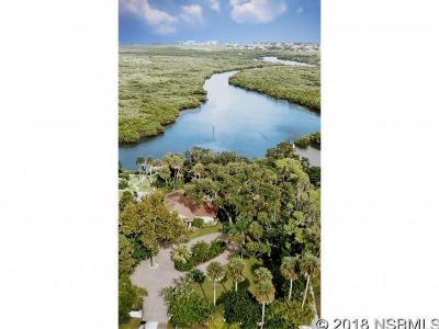 New Smyrna Beach Single Family Home For Sale: 101 Wayne Ave