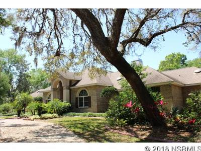 Port Orange Single Family Home For Sale: 6220 Shoreline Dr