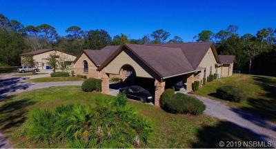 New Smyrna Beach Single Family Home For Sale: 1215 Williams Road