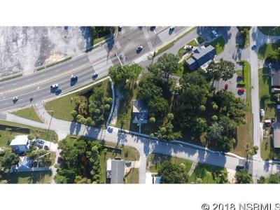 New Smyrna Beach Single Family Home For Sale: 1720 Magnolia St