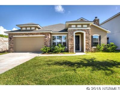 Port Orange Single Family Home For Sale: 6905 Vintage Ln