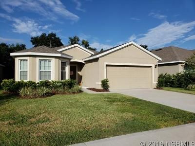 Edgewater Single Family Home For Sale: 528 Safe Harbor Dr